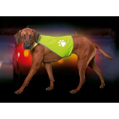 Safety Dog odsevni brezrokavnik