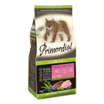 Primordial Cat Kitten