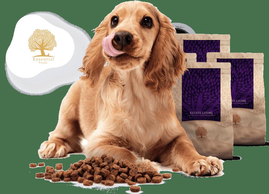 Izboljšati in podaljšati življenje psov.